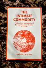 The Intimate Commodity
